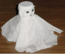 shaker ghost
