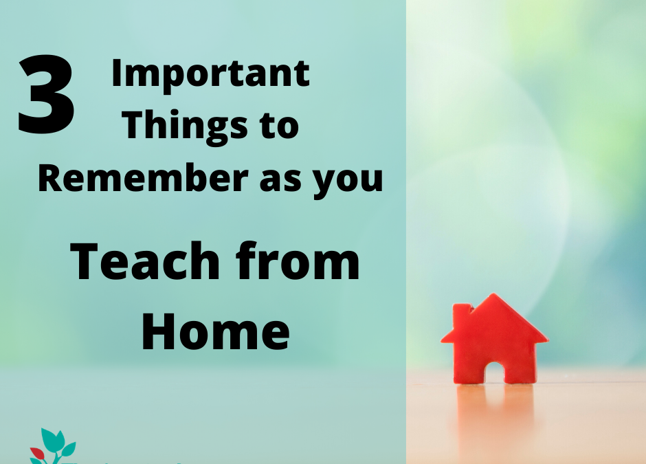 3 Important things to Remember as You Teach from Home