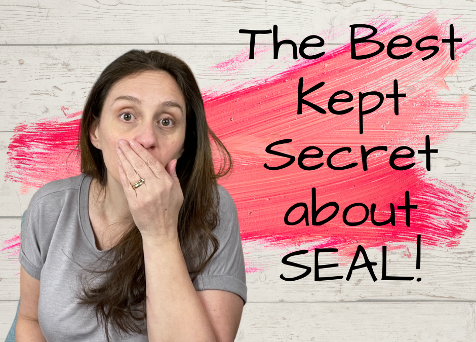 The Best Kept Secret About SEAL