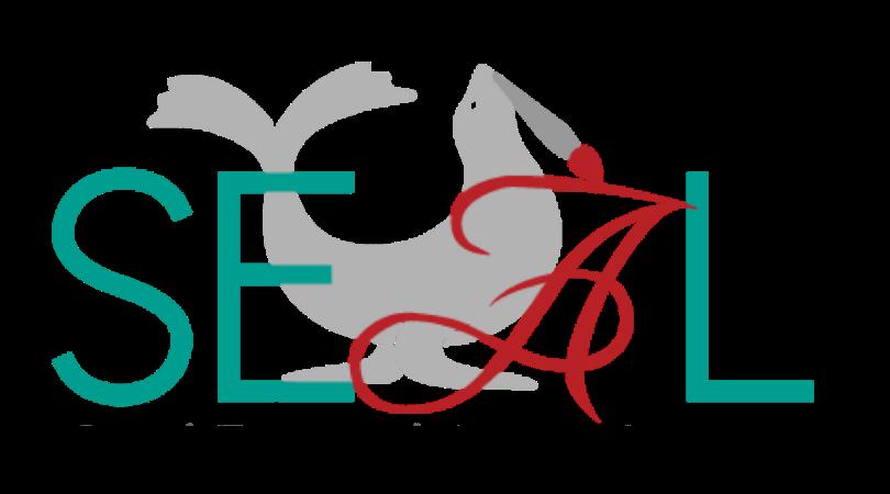 SEAL Foundations logo